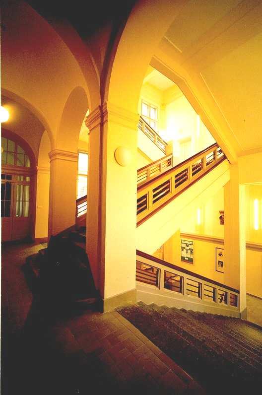 Institute of Anatomy